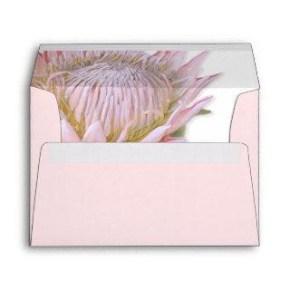 5x7 Modern Floral Pink Protea Flower Art Address Envelope