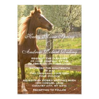 Beautiful Equestrian Animal Country Wedding 2A Invitation