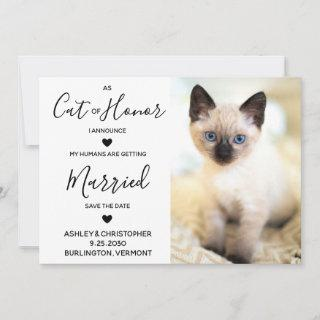 Cat Of Honor Save The Date
