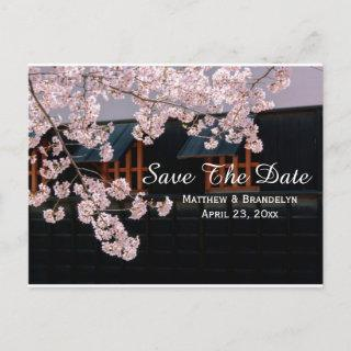 Cherry Blossoms Save The Date Wedding Post Card