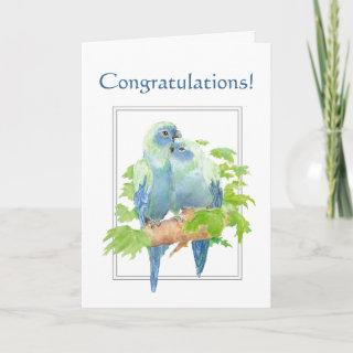 Congratulations for Couple with Cute Parrot Card