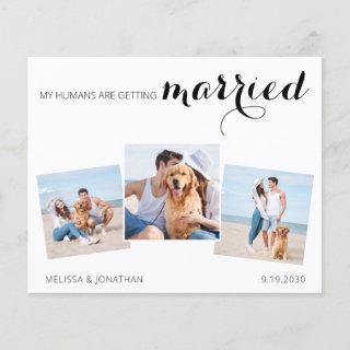 Dog Wedding Photo Collage Save The Date