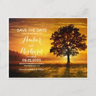 Fall Tree With Autumn Sunset Save The Date Announcement Postcard