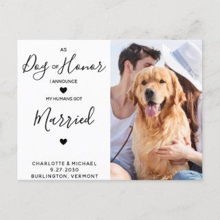 Just Married Dog of Honor Dog Wedding Announcement Postcard