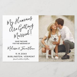 My Humans Are Getting Married Dog Wedding Budget