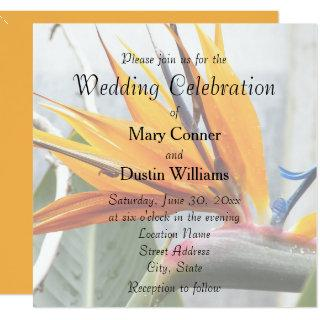 Orange Bird of Paradise Floral Wedding Invitations