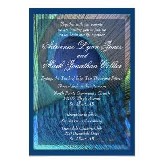 Peacock Feather Invitation with border