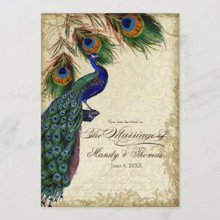 Peacock & Feathers Formal Wedding Tea Stained