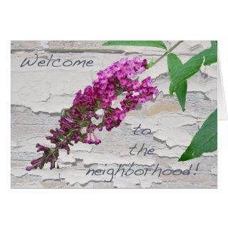 Purple Butterfly Bush Welcome to the Neighborhood