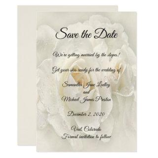 Soft ivory Rose Wedding Save The Date Invitation