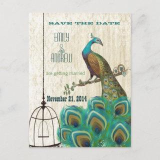 Vintage Damask Peacock Birdcage Save the Date Announcement Postcard