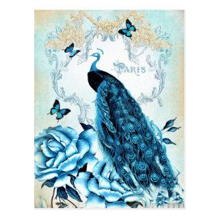 Vintage Peacock Blue Rose Butterfly Postcard