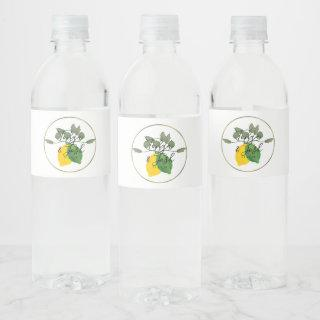 Watercolor Limoncillo Lime Lemon Water Bottle Label