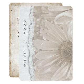 wedding daisy in sepia with torn paper edge invitation