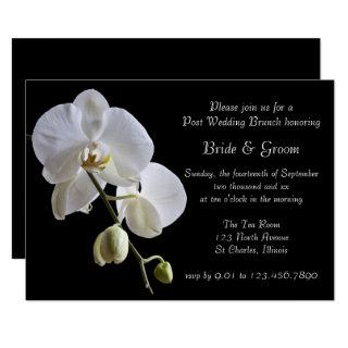 White Orchid on Black Post Wedding Brunch Invitations