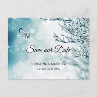 Winter Snow Snowflakes Wedding SAVE OUR DATE Announcement Postcard