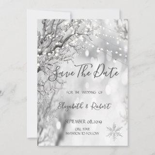 Winter Wonderland, Snowflakes Save The Date